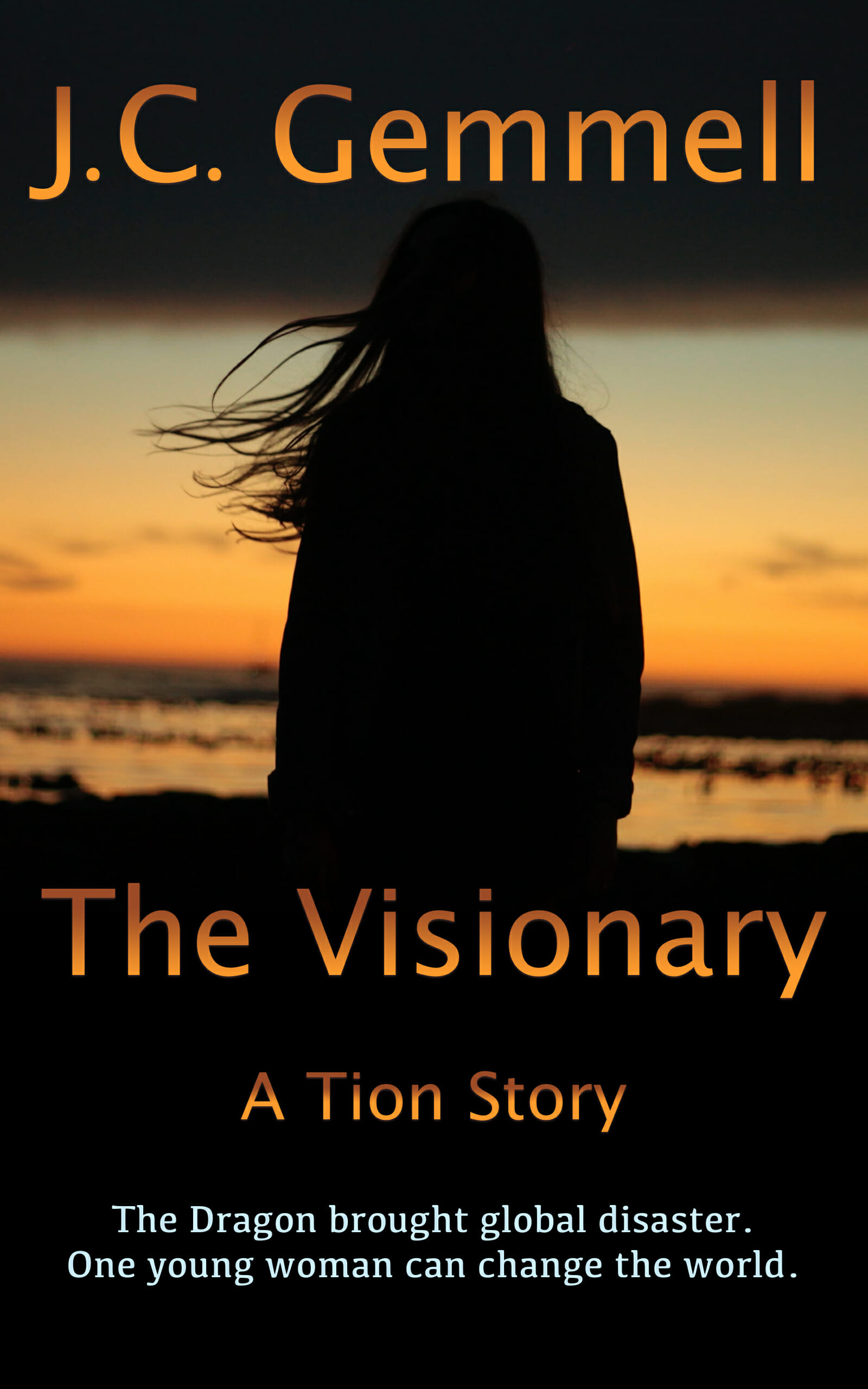 The-Visionary-Cover-Kindle.jpg
